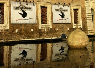 Venice photo birding logo by FAB813