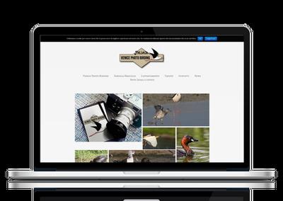 Venice photo birding web page by FAB813